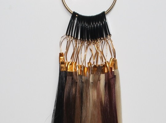 indian-hair-extensions-colour-Ring-01